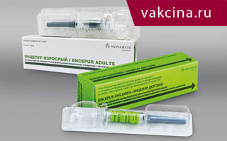 Вакцина против клещевого энцефалита ФСМЕ Иммун инжект