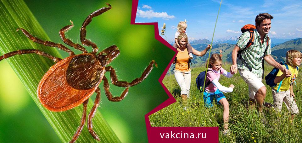 Вирус клещевого энцефалита в результате прогулки на природе.